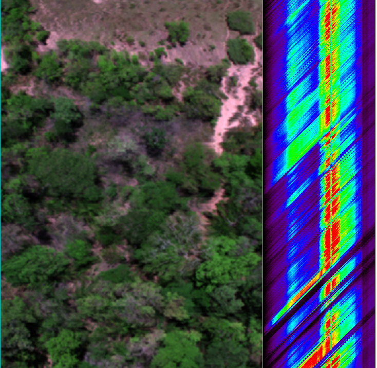 Hyperspectral cube of data (25 cm) for the location denoted by black box on the following images