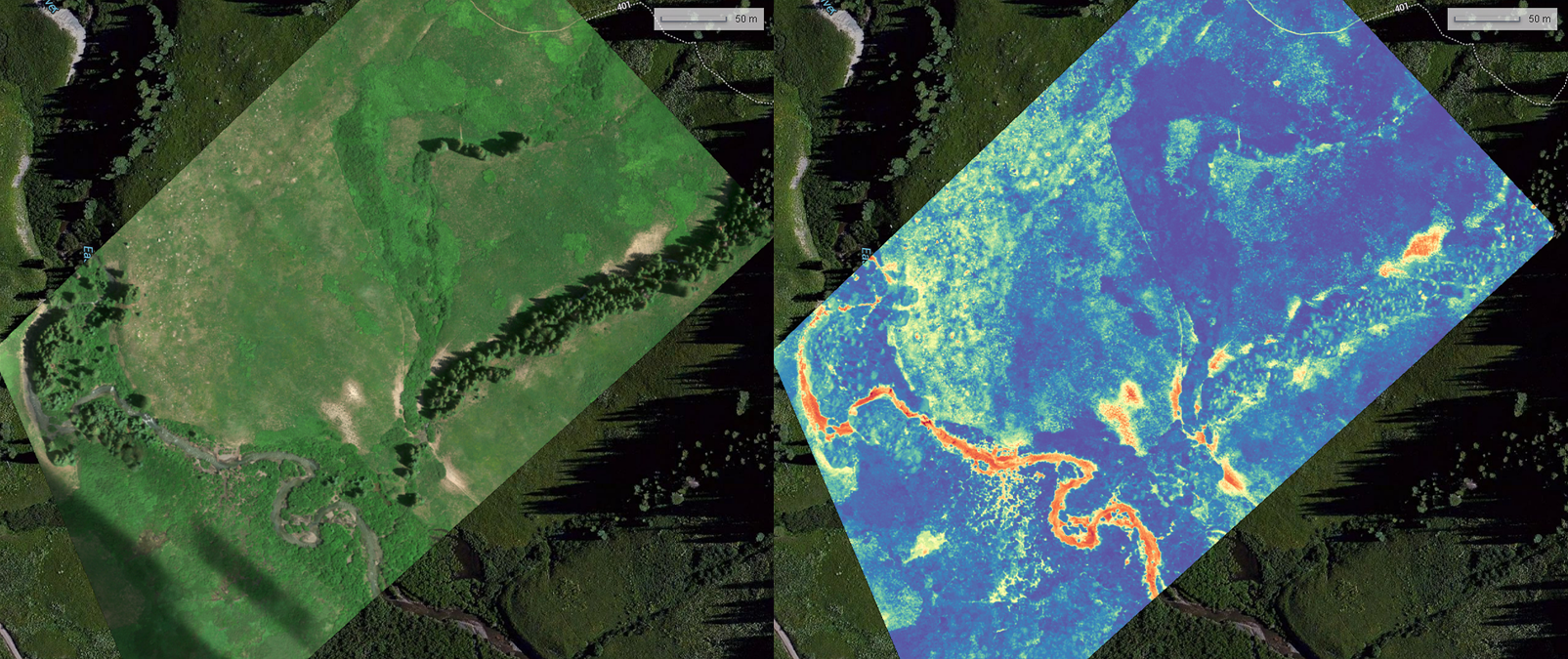 Stitched visual RGB imagery (left) and NDVI (right) within Micasense Atlas web portal.  Red indicates low NDVI (~0) and dark blue represent higher NDVI.