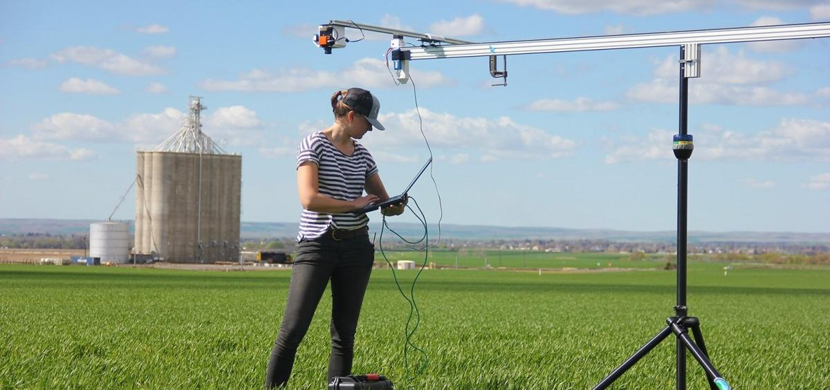 Marja Haagsma utilizes a rail mounted Hyperspectral camera in wheat fields near Pendelton (photo by Elizabeth Jachens)